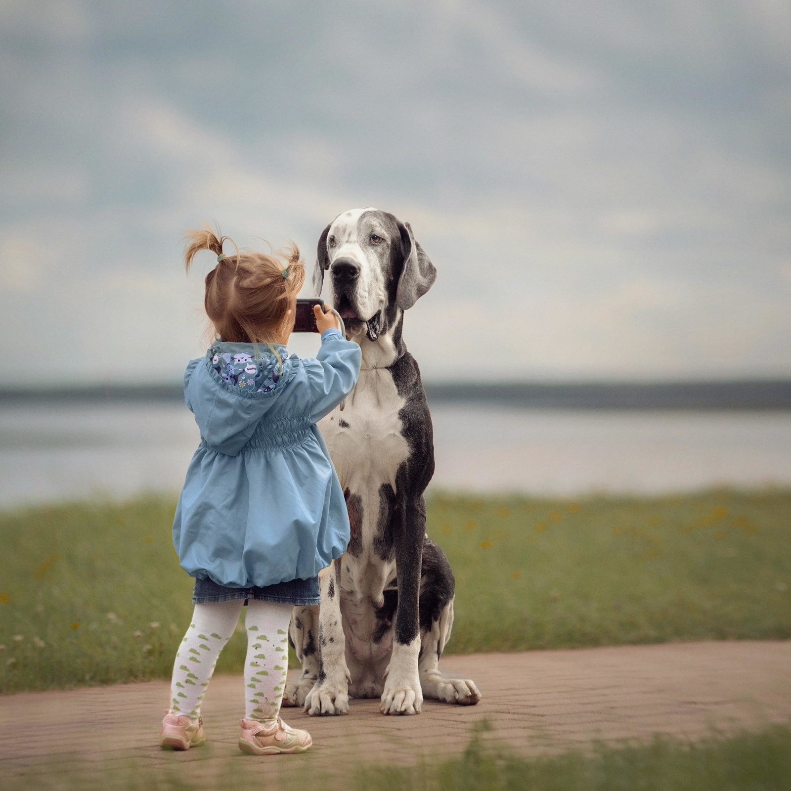 Parks of St. Petersburg: where to walk in winter with a child and with a dog