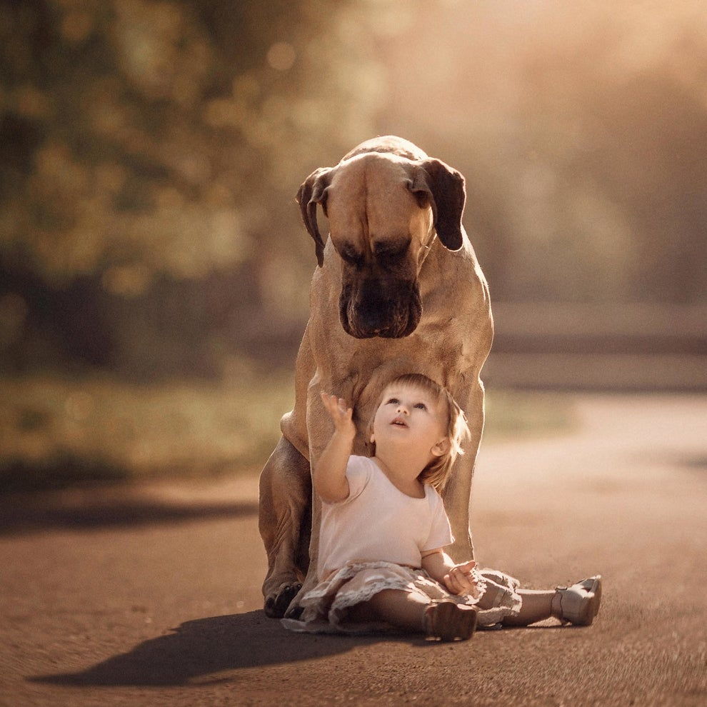A few years ago, some of Seliverstoff's friends asked him to take photos of their daughter Alice in a park. They had their Great Dane, Sean, with them, so they decided to incorporate him into the photos. After seeing the results, Seliverstoff knew he was onto something special.