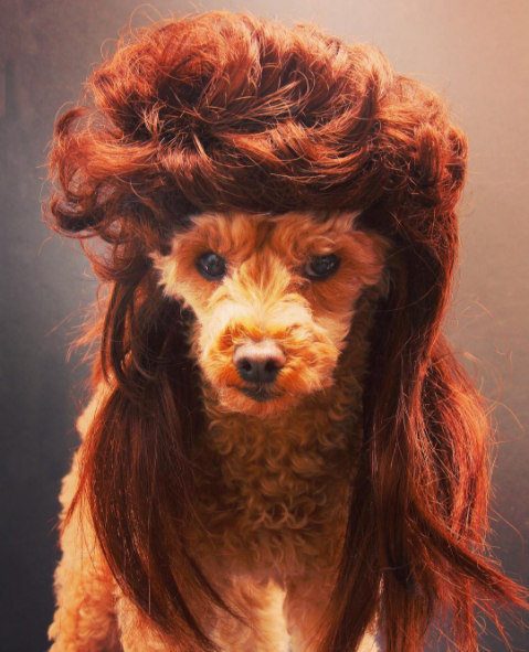 When you get your hair done for the first time in a long time but don't love it: