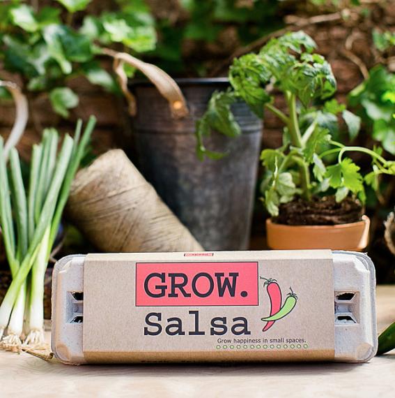 Salsa growing kit in brown-colored egg carton packaging