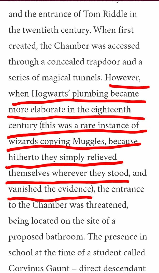Just look at this actual excerpt from Rowling's entry about the Chamber of Secrets: