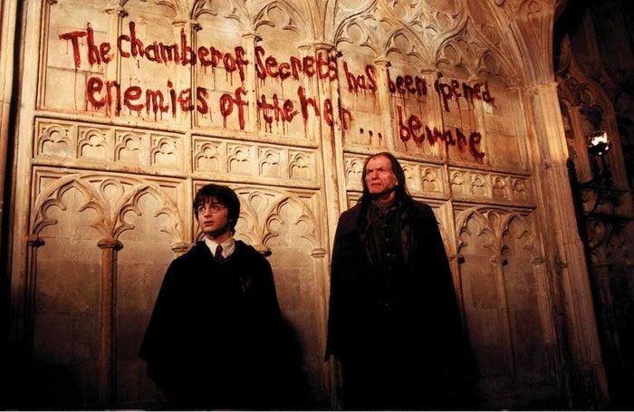 """11. Harry, eres la persona más insoportable del mundo. El mundo no gira a tu alrededor.12. - Dobby: Hola, soy Dobby. No quiero que vayas a Hogwarts BAJO NINGÚN CONCEPTO.- Harry: OH VAYA QUÉ RARO ALGO ME IMPIDE IR A HOGWARTS ME PREGUNTO QUÉ SERÁ.13. Entiendo que son magos, pero que aparezcan pintadas diciendo """"vamos a matar a todo el mundo"""" me parece un buen motivo para cerrar un colegio.14. Bueno, también me parece un buen motivo quitarle todos los huesos del brazo a un chaval que juega a un deporte que consiste en tirarle pelotas a la cabeza a gente que está volando.15. Harry, haz el favor de pedirle ayuda a un adulto.16. No, un adulto sin arañas gigantes.17. ¡No! ¿¡Qué hacéis!? La solución no es que haya MENOS ADULTOS en el colegio, señores del ministerio.18. Voldemort, deja de poseer a la gente, que el truco empieza a oler.19. Dobby <3"""