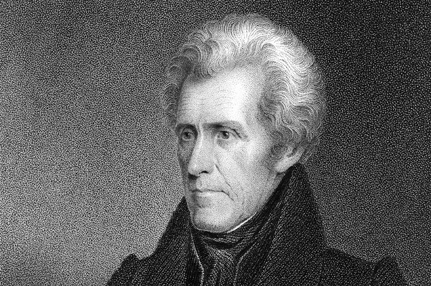andrew jackson s inauguration and the rise Need essay sample on andrew jackson's inauguration and the rise specifically for you for only $1290/page order now.