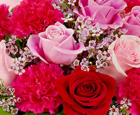 Send Flowers To Get Same Day Delivery On A Variety Of Floral Options.