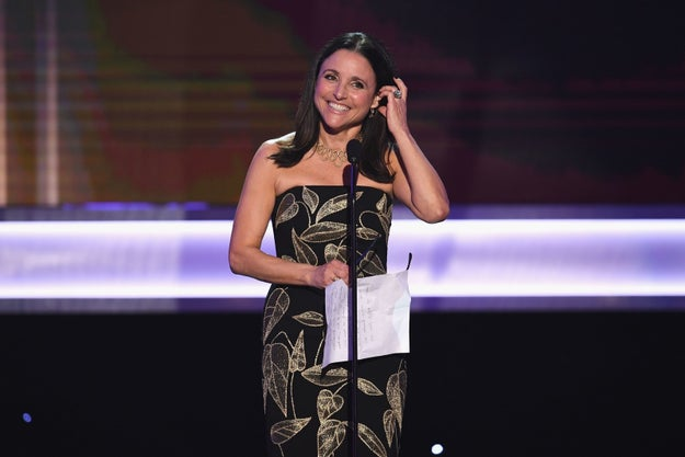 Veep star Julia Louis-Dreyfus won the SAG award for Outstanding Performance by a Female Actor in a Comedy Series on Sunday.