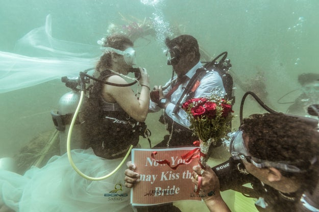 """Once the ceremony was over, the """"Now you may kiss the bride"""" placard was presented..."""