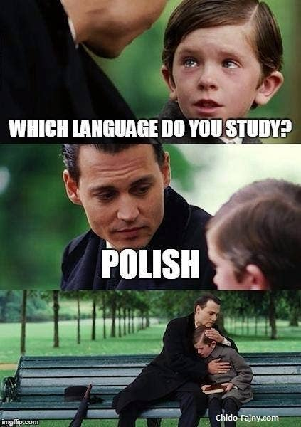 19 Of The Funniest Memes About Poland