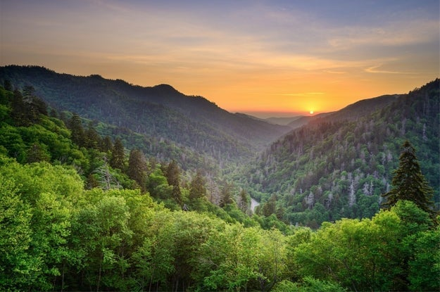 The most visited national park is Great Smoky Mountains National Park, which had an insanely impressive 10,712,674 visitors in 2015.