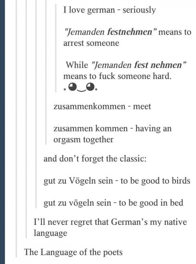 German Is The Most Ambiguous Language In The Entire Universe