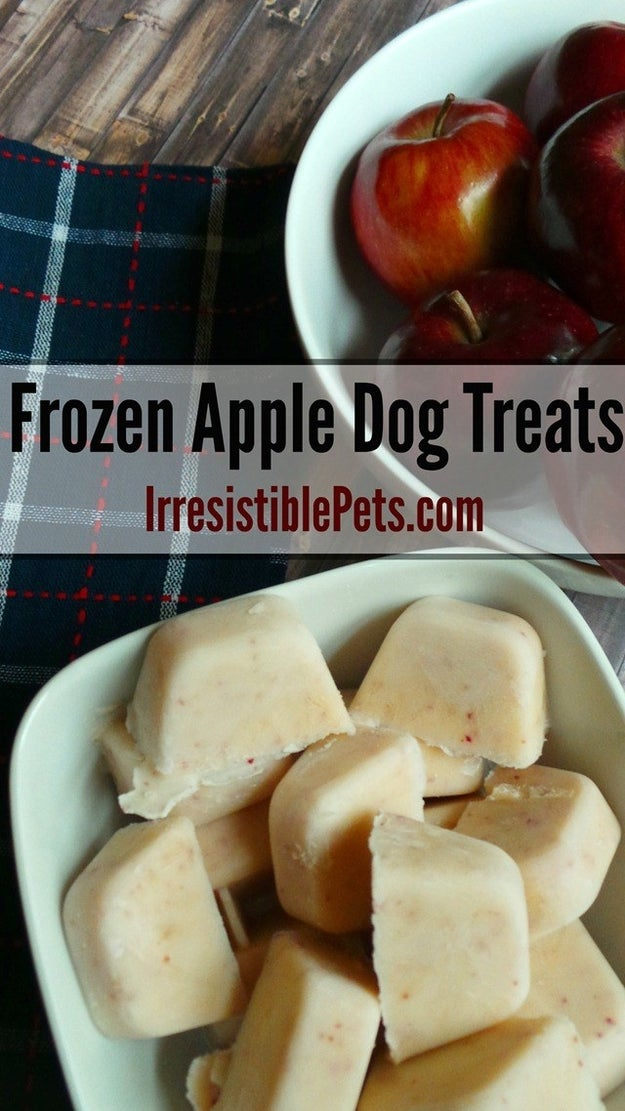 Freeze apples with a bit of yogurt + water for easy DIY dog treats.