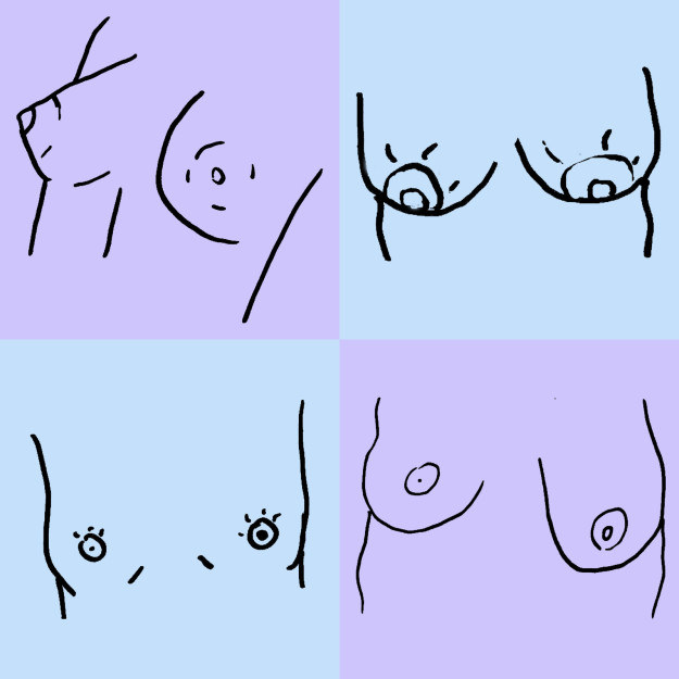 Boobs are like snowflakes. No two are exactly alike.