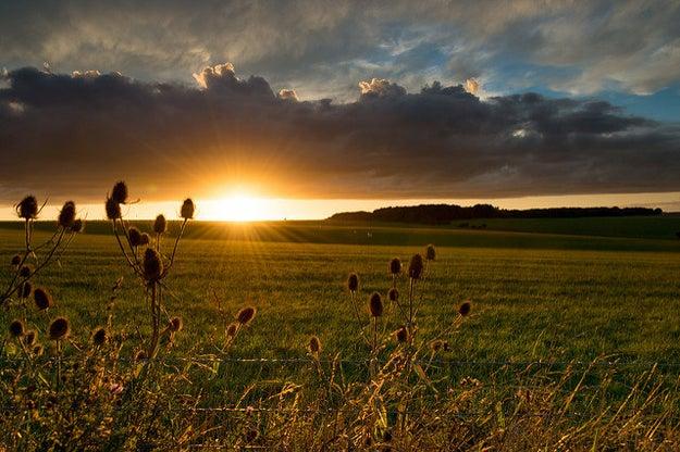 Longleat, Wiltshire
