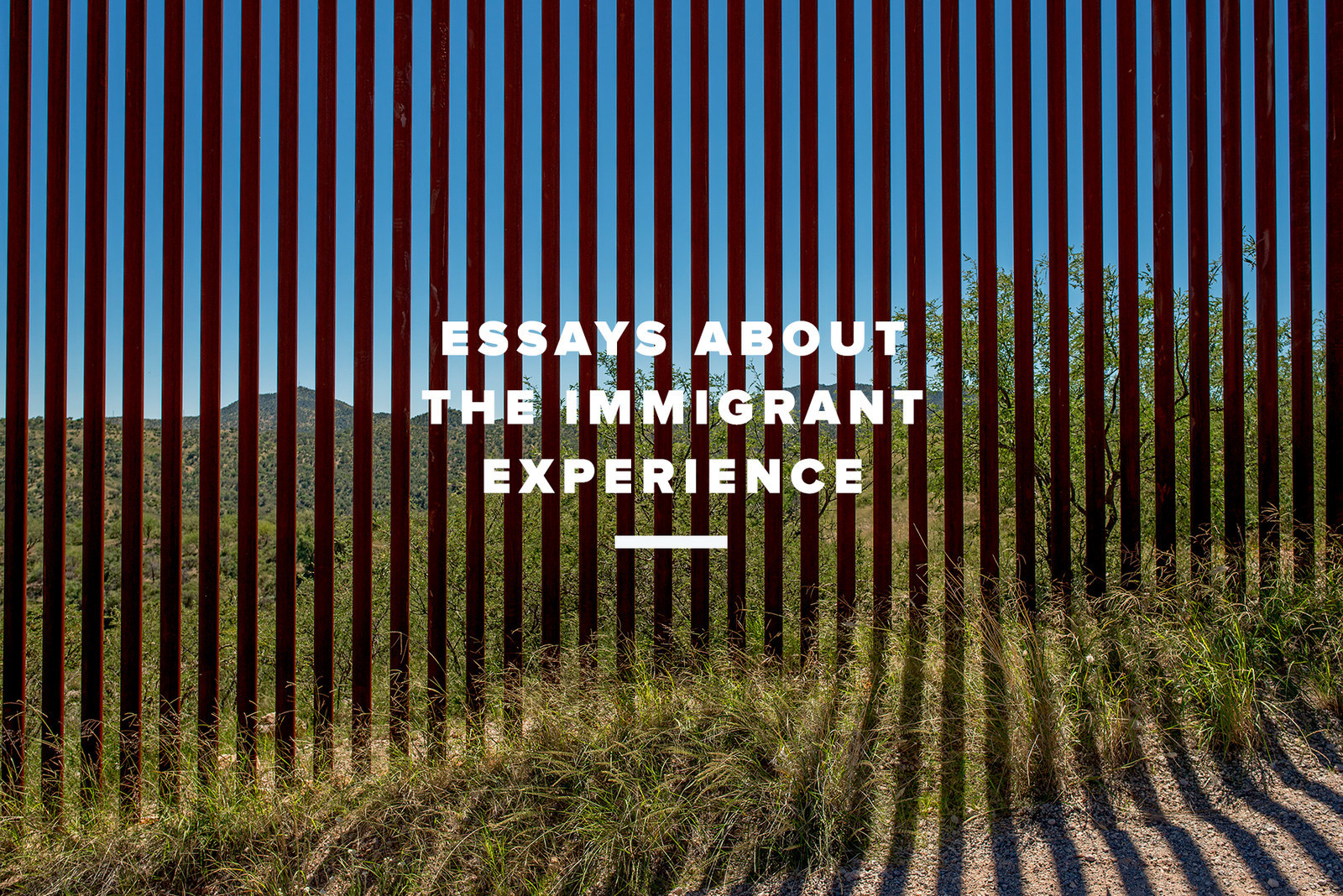 essays about the immigrant experience you need to tomas munit the new york times redux