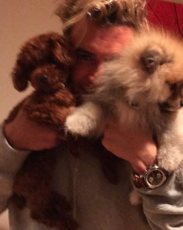 And Orlando Bloom cuddled some dogs.