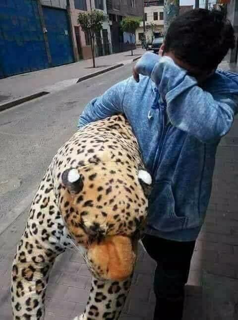 El tigre era muy realista, no tanto como su rechazo.