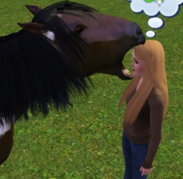 This horse who is hungry for anything: