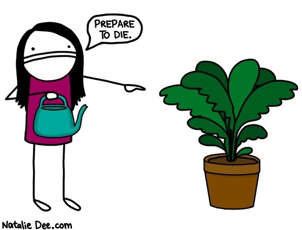 This Natalie Dee comic about how it feels when you get a new plant.