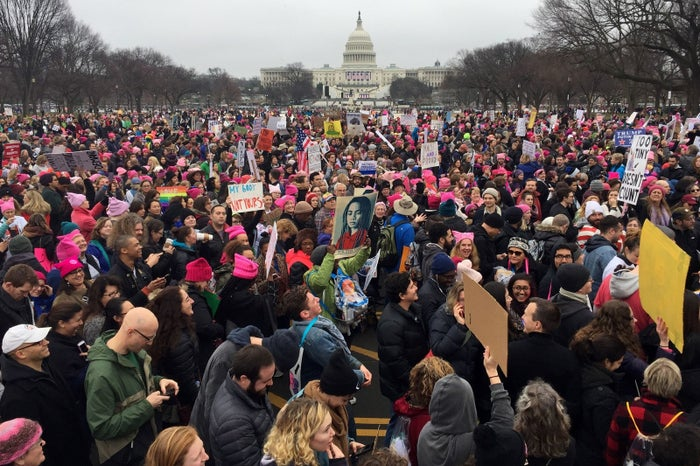 Demonstrators protest on the National Mall in Washington, DC, for the Women's march on January 21, 2017.