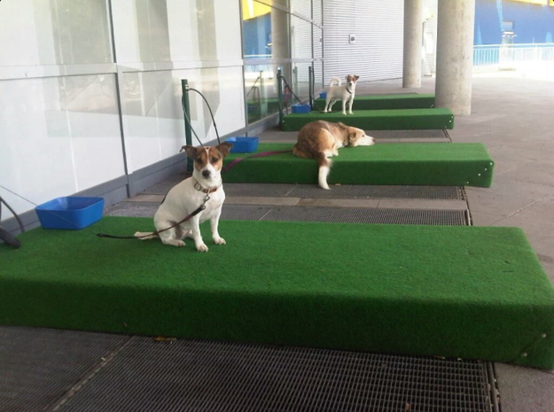 """These """"parking spaces"""" for dogs outside of an Ikea in Berlin."""