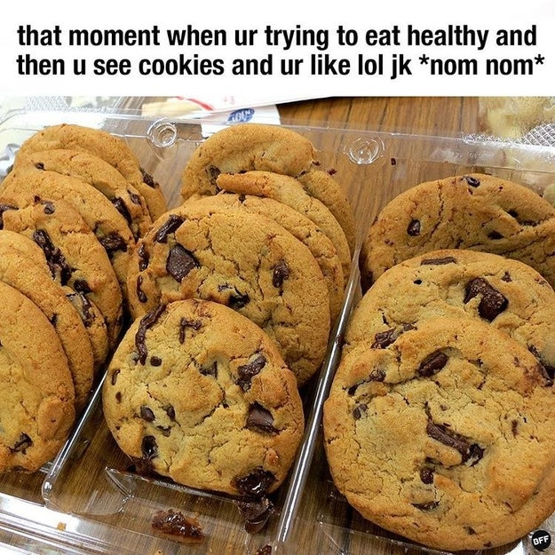 "When people ask if you eat your ""five a day"", you nod. They don't need to know it's cookies."