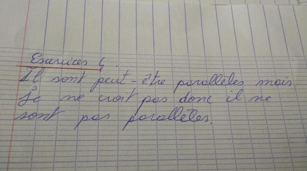 «Ils sont peut-être parallèles mais je ne croit pas donc il ne sont pas parallèles.»