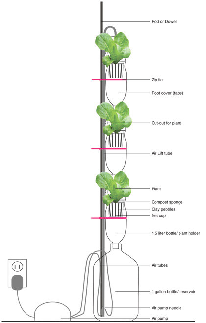 Or, plan and build your own vertical window farm to grow veggies and herbs in your tiny apartment.
