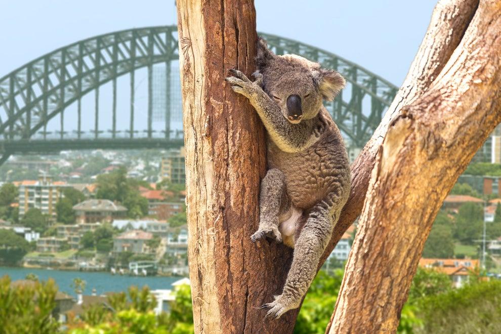 9. Sydney, Australia