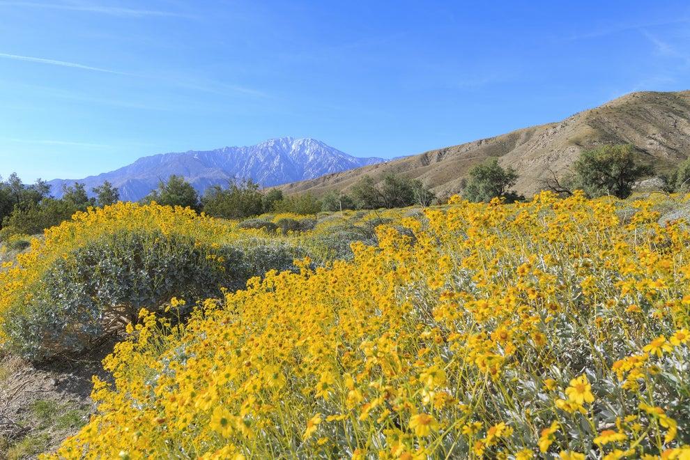 3. Palm Springs, California