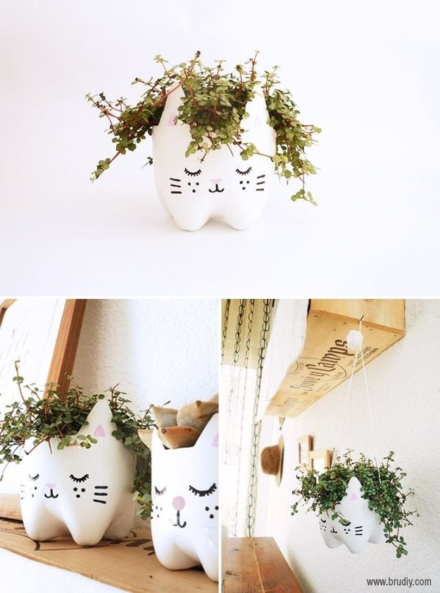 This adorable planter that just requires just one empty soda bottle.