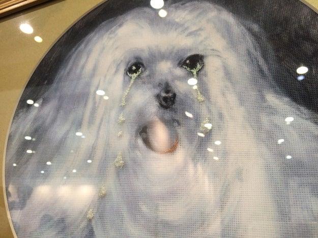 """Una expositora dijo que este perrito llorando """"es una gran inversión."""""""