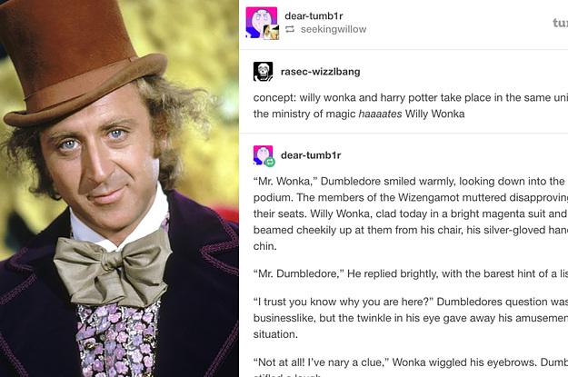 Tumblr Thinks Mary Poppins and Willy Wonka Belong In Harry