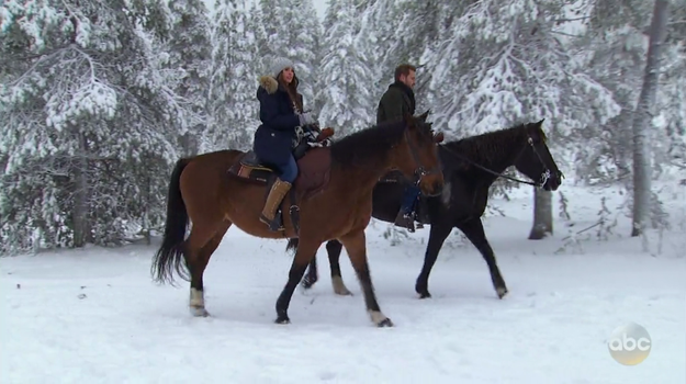 Nick and Vanessa's final date starts off with a snowy horseback ride, and Nick's instructions include,