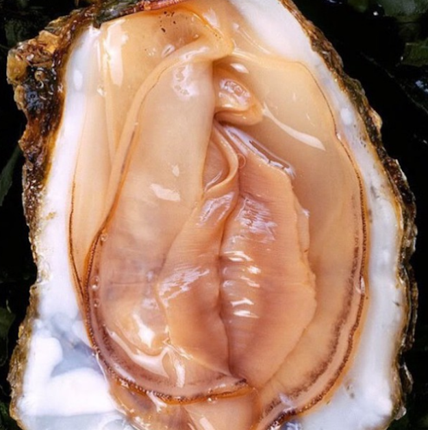 Oyster sexuality