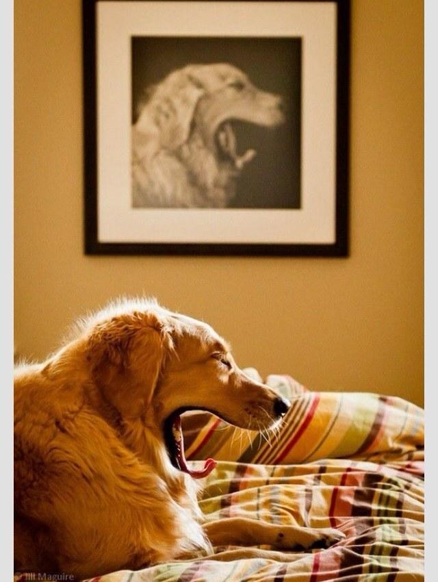 今日保存した最高の画像を転載するスレ 616 [無断転載禁止]©bbspink.comYouTube動画>5本 ->画像>988枚