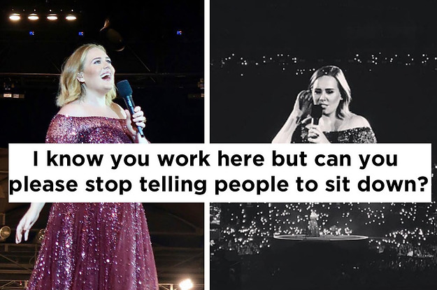 Adele Got Mad At A Security Guard Who Asked People To Sit Down At Her Concert