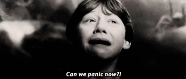 'Podemos entrar em pânico agora?!'