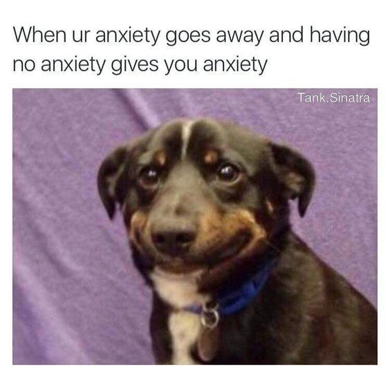 sub buzz 5809 1490053507 2?downsize=715 *&output format=auto&output quality=auto 55 memes about anxiety that will make you say \
