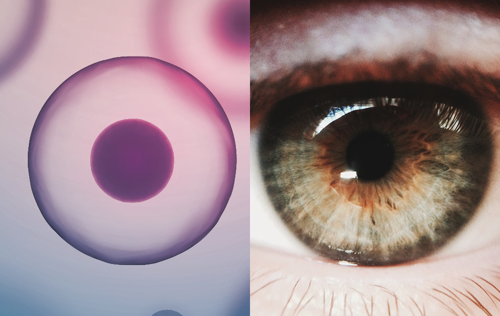 An Experiment That Blinded Three Women Unearths The Murky World Of Stem Cell Clinics