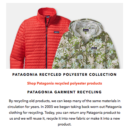 recycling and patagonia essay
