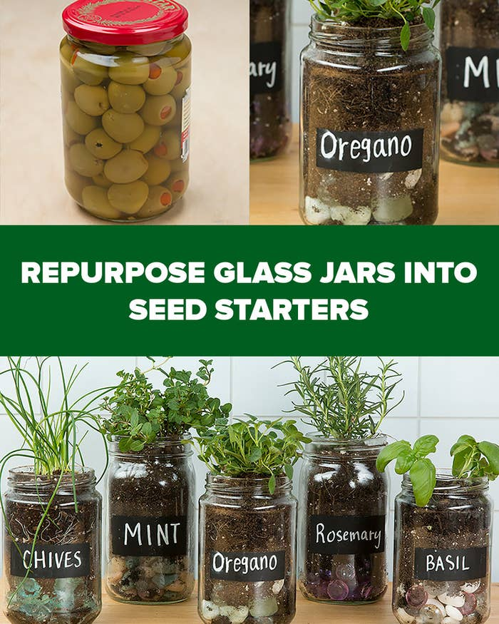 Old glass jars and bottles