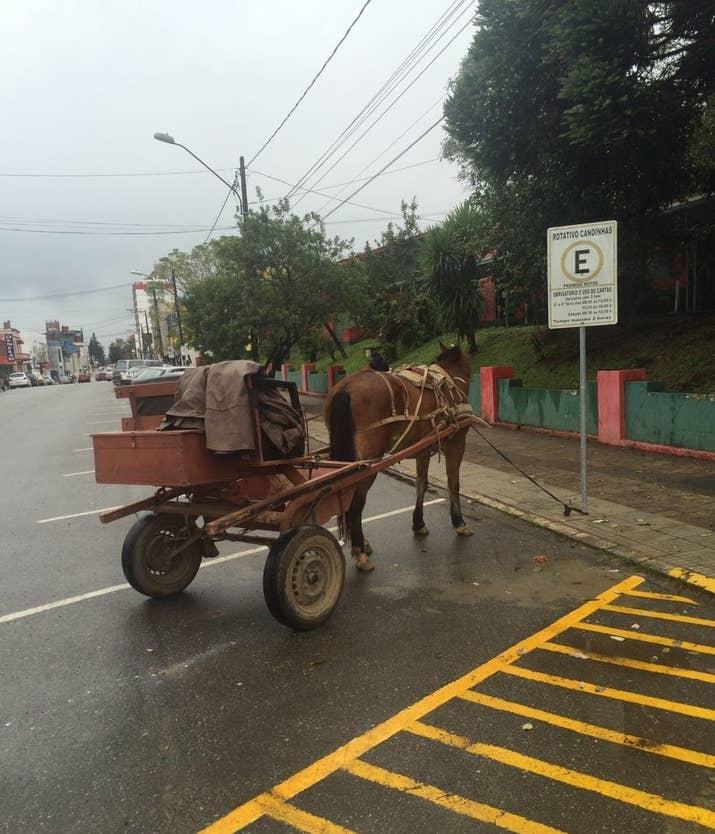 Com cavalos e carros circulando em pé de igualdade.
