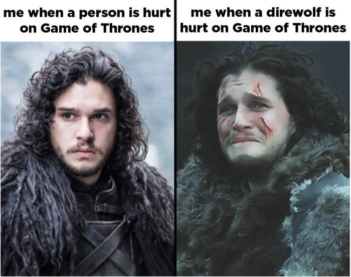 literally 100 really funny game of thrones memes