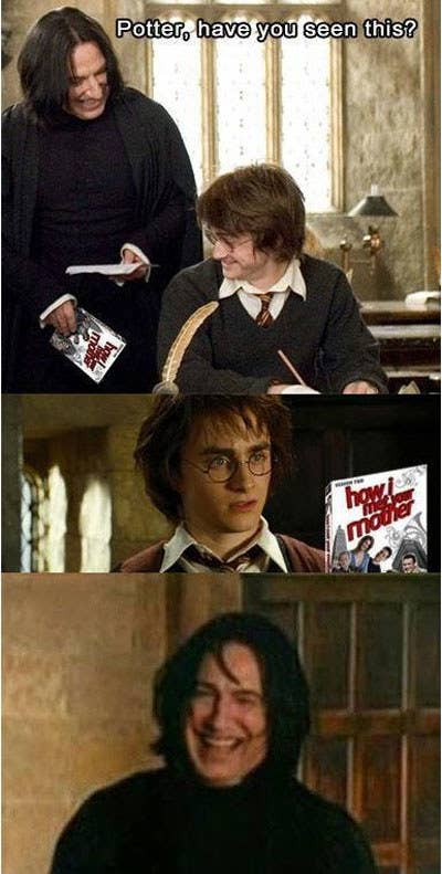 Harry Potter Memes Sub-buzz-5441-1490369577-2