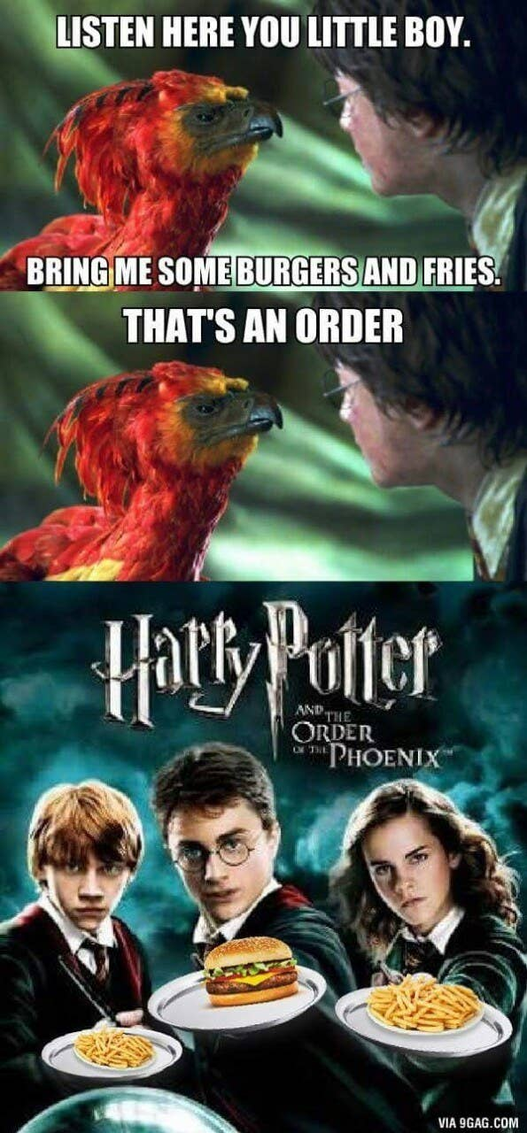Harry Potter Memes Sub-buzz-777-1490376788-1