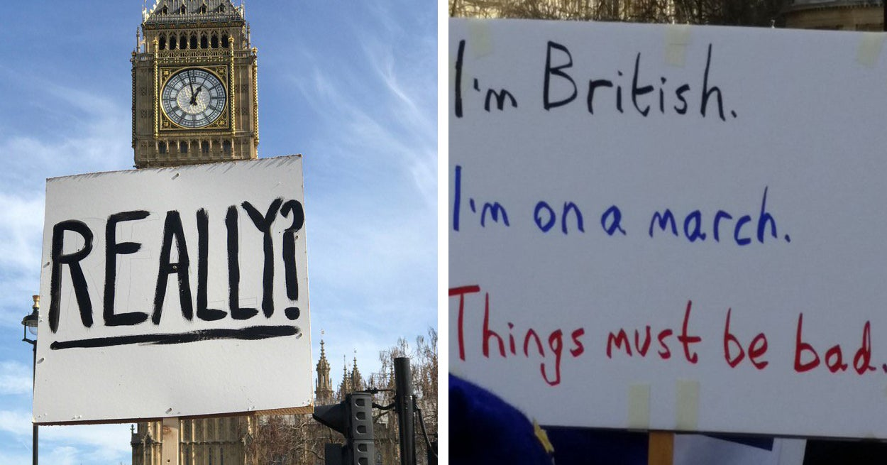 Literally just 17 surprisingly british signs from londons march against brexit
