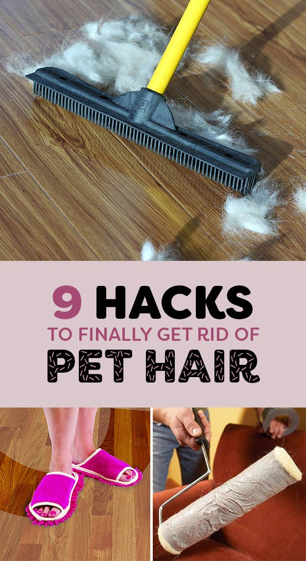 Peachy 9 Life Saving Hacks For Removing Pet Hair From Everywhere Machost Co Dining Chair Design Ideas Machostcouk