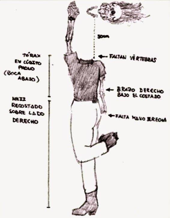 El 28 de septiembre de 1992, Soledad Donoso, una joven cordobesa de 18 años, salió de su casa a a las 17:45 de la tarde para ir a trabajar a la pizzeria donde llevaba trabajando un año. Una hora y media después, su familia recibió una llamada del dueño del restaurante para informar de que Soledad no había aparecido. Comenzó la búsqueda.Doce días después de su desaparición, un cazador encontró su cadáver en una zona de acceso limitado en el río Guadalquivir mientras salía a cazar patos. El cuerpo sin vida de Soledad Donoso estaba en avanazado estado de descomposición y solo pudieron reconocerla por la ropa. La autopsia determinó que Soledad Donoso había fallecido el mismo día que desapareció. Su cuerpo tenía la ropa puesta, pero su cabeza se encontraba a un metro del resto del cuerpo, descarnada y con el pelo arrancado, tampoco tenía una de las manos y a su cuello le faltaban vértebras. La Policía sospechó de dos hombres: un chico con el que había tonteado durante la Feria de Córdoba que pronto quedó en libertad y un hombre, apodado 'Fali', que mantenía con Donoso una aventura a espaldas de su pareja que su círculo cercano calificaba como 'tóxica'. La Policía tampoco pudo demostrar su autoría en el asesinato de Donoso. A día de hoy, el crimen de Soledad Donoso sigue sin resolverse.