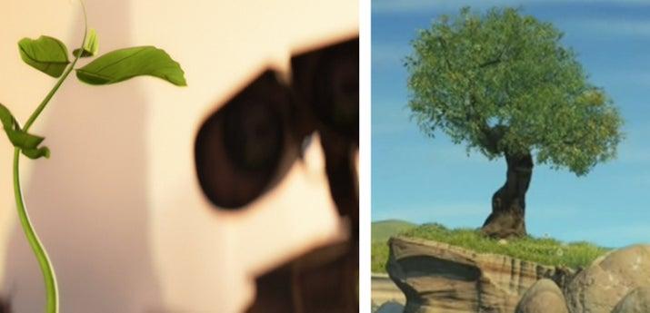 Se cree que el árbol es el mismo bajo el que Carl y Ellie van de picnic en Up y el mismo de la canción de Jessie sobre Emily en Toy Story 2. Es sólo un pequeño y dulce lazo que se le ocurrió al fanático de Disney, Matthew Gottula.—Anna Kopsky