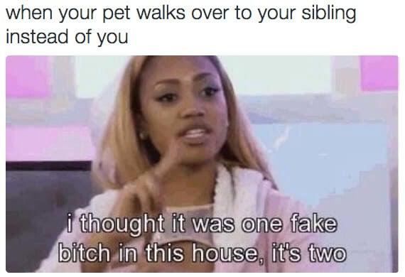 'Eu pensei que só tinha uma Falsiane nesta casa, mas são duas'