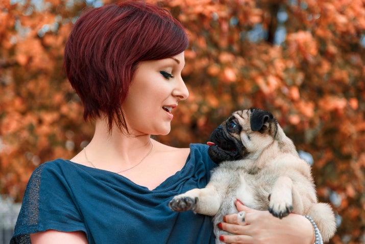 """Atribuições: Ter que aturar o humano falando com uma voz estranha, como se fosse o próprio cachorro, frases estranhas como """"EU SOU O TCHUTCHULUCO DA MAMÃE!!!"""" e """"A MAMÃE FALOU QUE EU SOU A COISA MAIS PIRILUQUESA DO PLANETA!!!!"""".Desvantagens: O cachorro deve achar que você é besta."""
